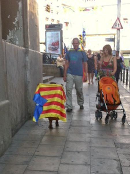 Wer zu dicht hinter der Fahne marschiert...